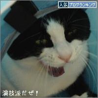 dai20150421_banner.jpg