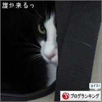 dai20150422_banner.jpg