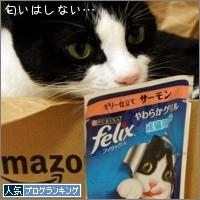 dai20150427_banner.jpg