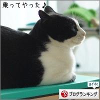 dai20150511_banner.jpg