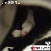 dai20150512_banner.jpg