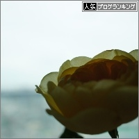 dai20150519_banner.jpg