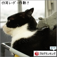 dai20150529_banner.jpg