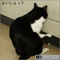 dai20150603_banner.jpg