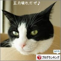 dai20150610_banner.jpg