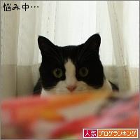 dai20150622_banner.jpg