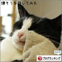 dai20150623_banner.jpg