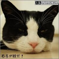 dai20150625_banner.jpg