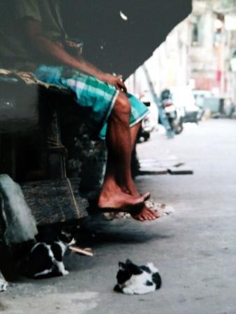 コルカタの街角