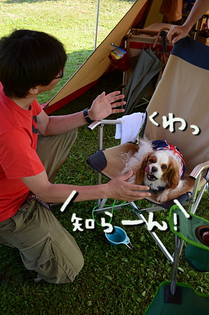 DSC_8113_20150607234845075.jpg