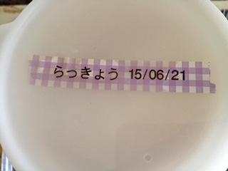 Japanese leek 150621_2