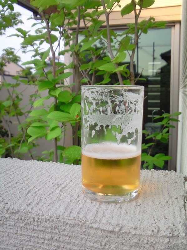 真昼間からビール