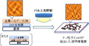 AIST_CNT_CTF_process_fig1_image.jpg