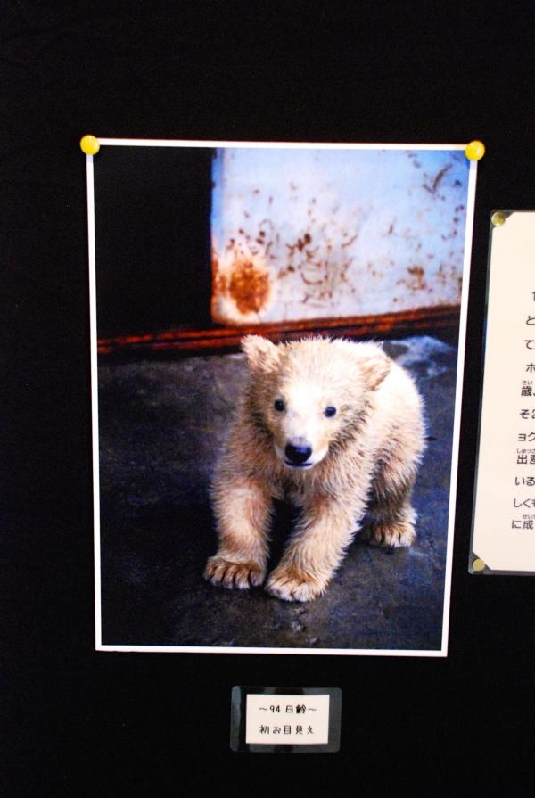 Paradizoo - 動物園って、楽しい...
