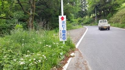 20150515_142250.jpg