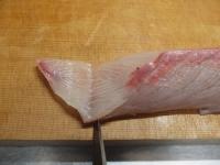サーモンとカンパチの握り寿司26