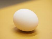 ゆで卵02