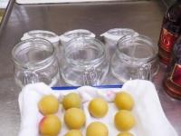 フルーツブランデー梅酒3種17