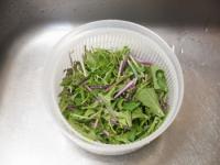 水菜とチキンステーキのサラダ29