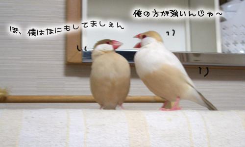 文悟空_2