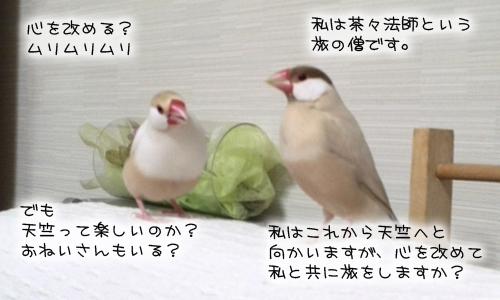 文悟空_13