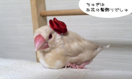 おしゃれのレッスン_5