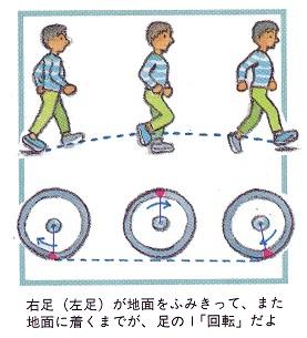走る速さのメカニズム