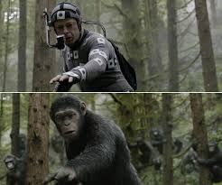 apes03.jpeg