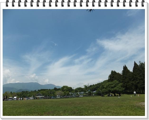 2015-5朝霧高原