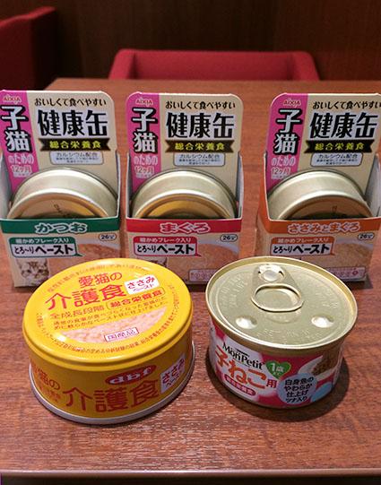 猫胃腸炎32