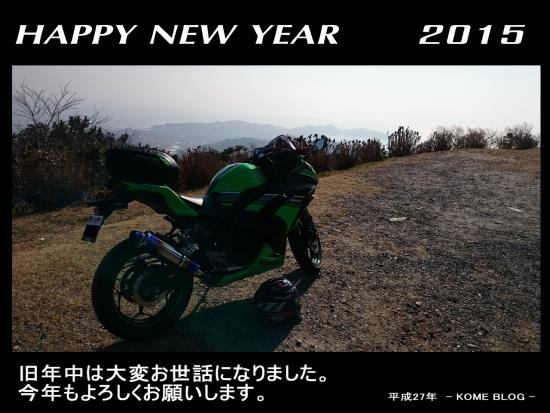 2015 AHN