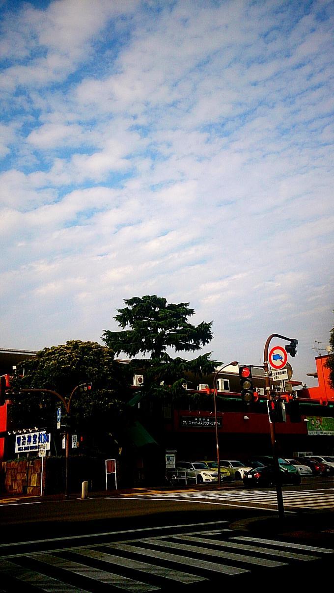 鰯雲_20150611
