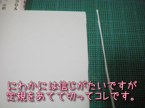 g20150408-01-01.jpg