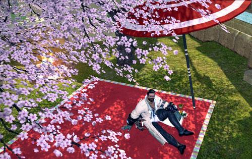 花見ハイランダー