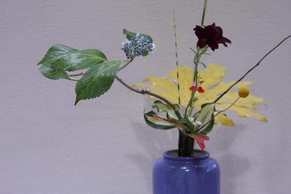 150530-flower-07.jpg