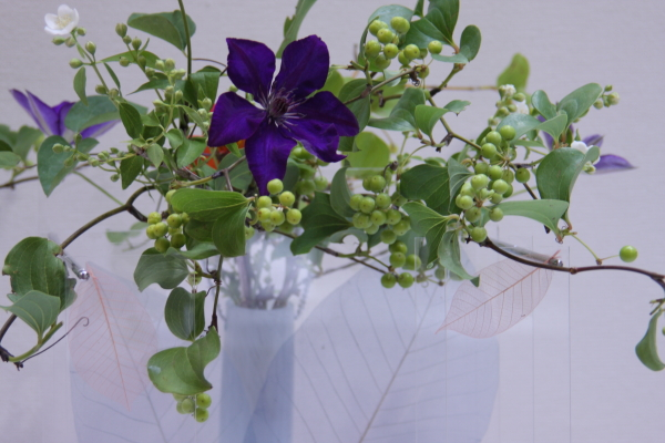 150530-flower-09.jpg