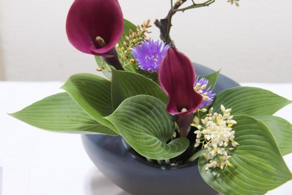 150530-flower-17.jpg