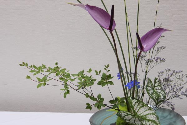 150530-flower-18.jpg