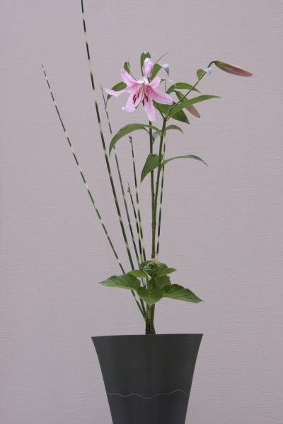 150530-flower-21.jpg