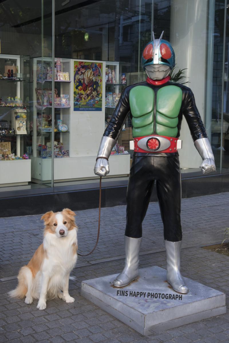 仮面ライダーとお散歩