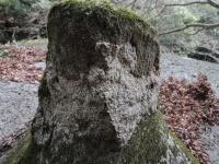 にょっきり岩4