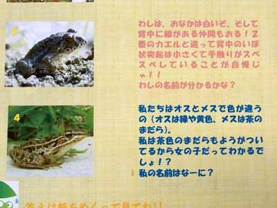 日田市立博物館