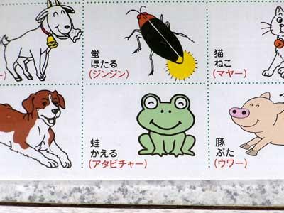 沖縄方言集のカエル