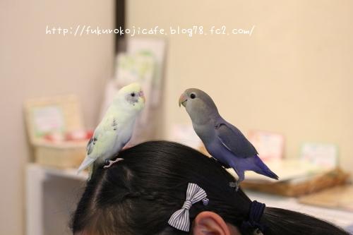 ユキ&ナル1