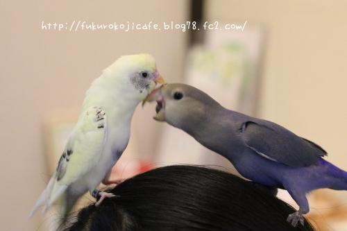 ユキ&ナル2