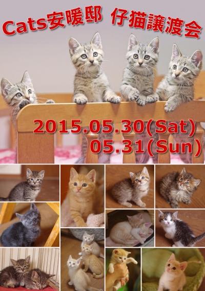 20150530-31.jpg