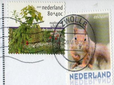 NL-1924440S_convert_20150416224701.jpg