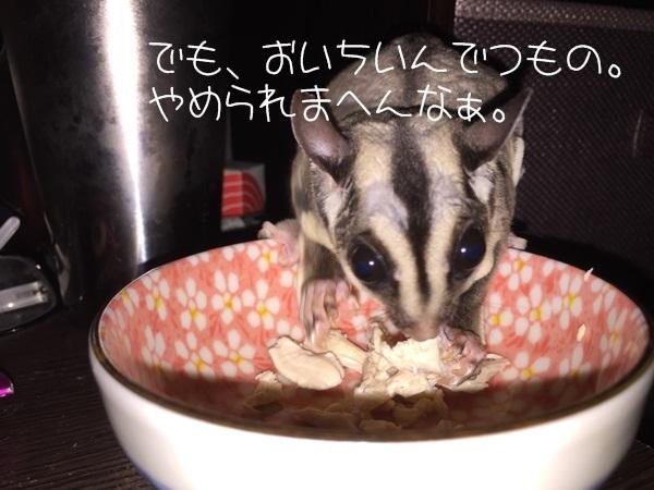4_20150515134424669.jpg