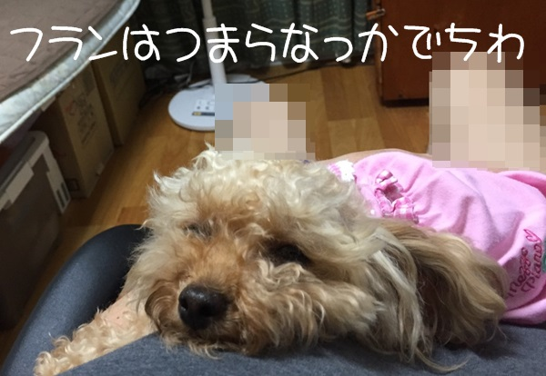 S__8773634.jpg