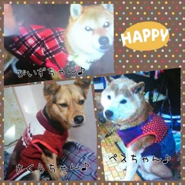 PhotoGrid_1422486780102.jpg